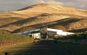 Sileni_Estates_Winery_WEB