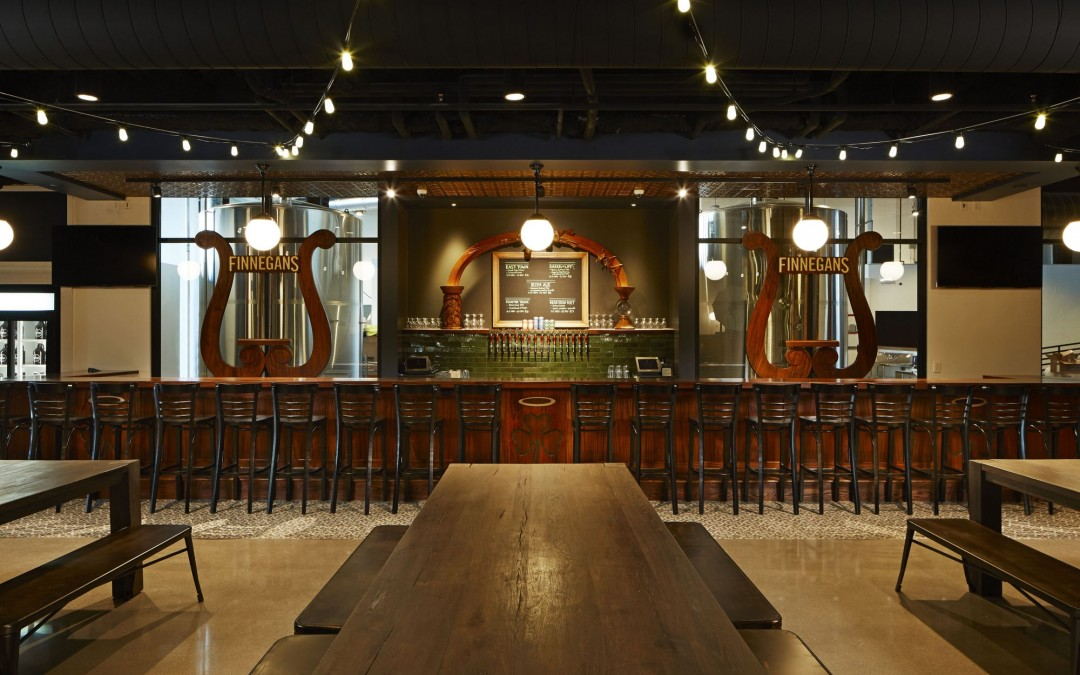 Finnegans Brewing Company, New Brewery, New Beers