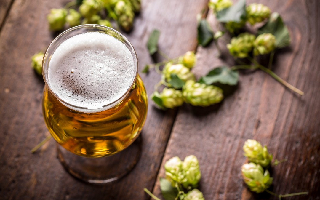3 IPAs to Keep Your Taste Buds Awake