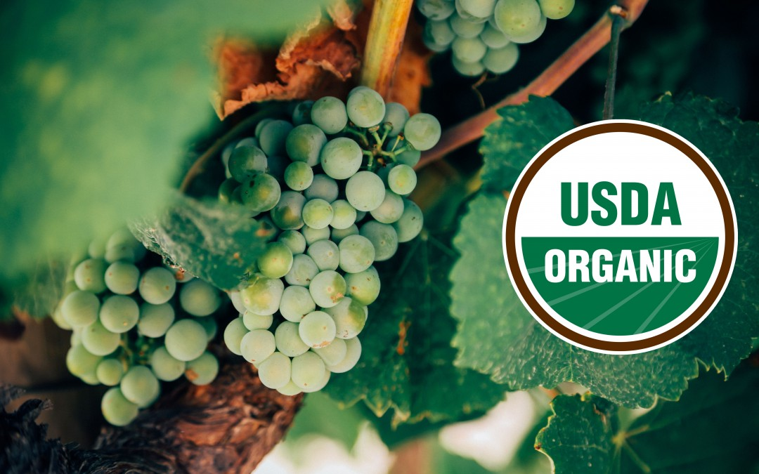 Great Organic and Sustainable Wines