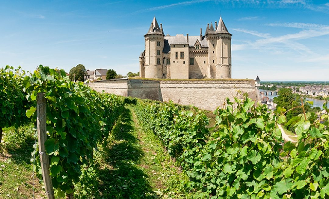 Reigning Queen of Loire: Vouvray's Chenin Blanc