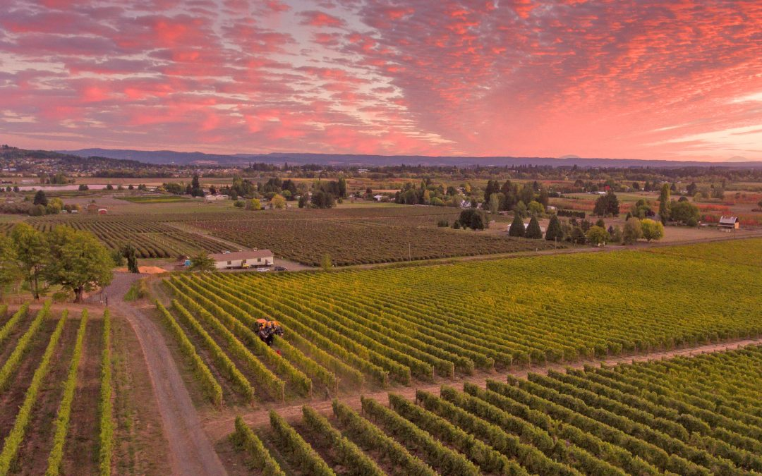 Celebrate Willamette Valley, Oregon
